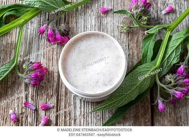 A jar of comfrey root ointment with fresh blooming symphytum officinale plant