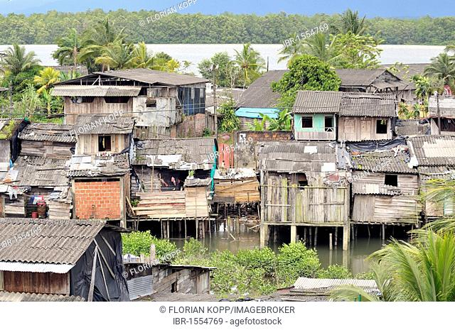Poor dwellings, stilt houses, mangrove area in the estuary of the Rio Anchicaya river in the Pacific, Bajamar slum, Buenaventura, Valle del Cauca, Colombia