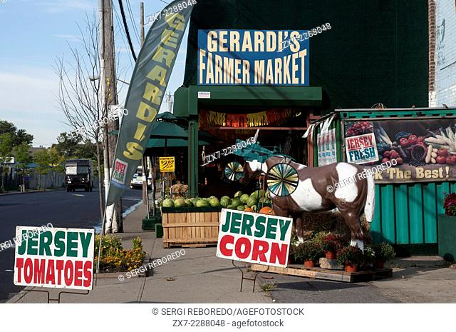 Staten island farmer market. Jersey tomatoes. Jersey corn. New York. USA. Unparalleled quality and flavor of the regionally grown products available at this...