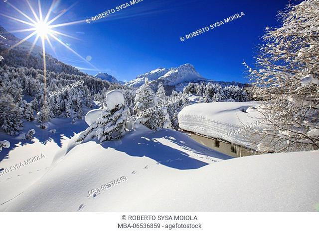 The winter sun shines on the snow covered woods and the landscape around Maloja Engadine Graubunden Canton Switzerland Europe
