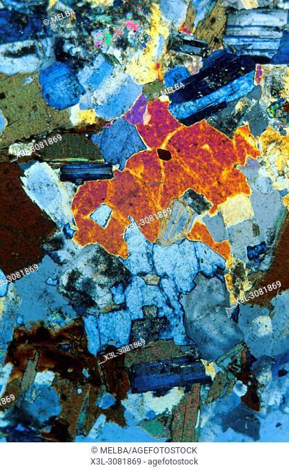 Biotitic granite. Igneous rocks. Pyrenees. Spain. Petrograhic microscope