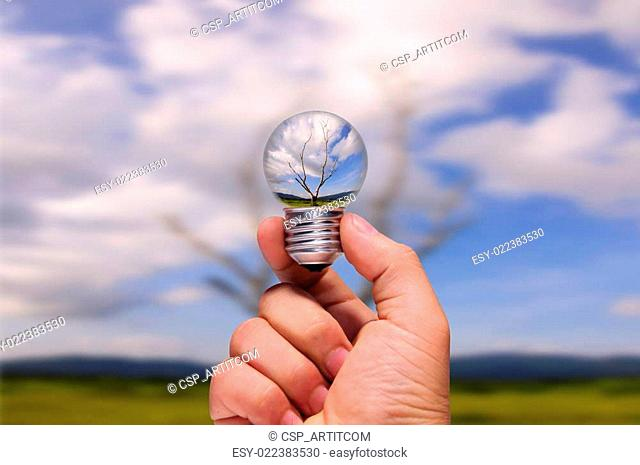 hand holding of photo manipulation dead tree in light bulb