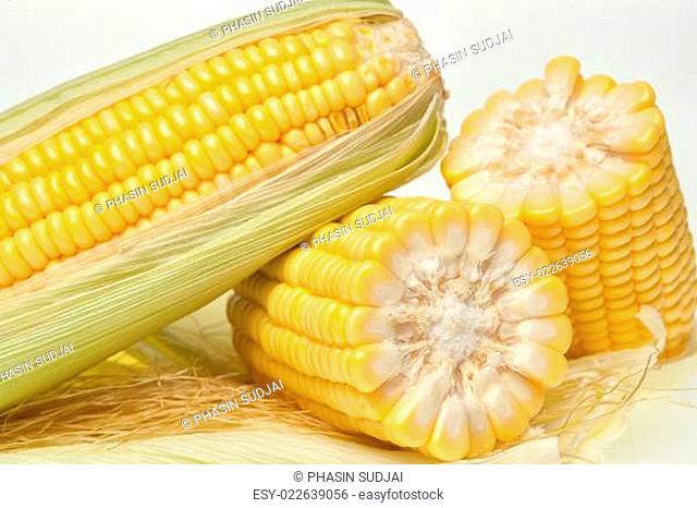 Fresh corn on the cob closeup