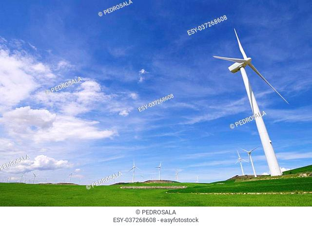 aligned group of windmills for renewable electric energy production, Zaragoza province, aragon, Spain