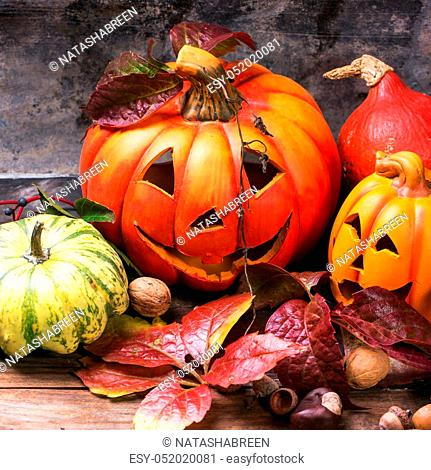 Halloween's pumpkins with autumn leaves on wooden table. Square image with selective focus