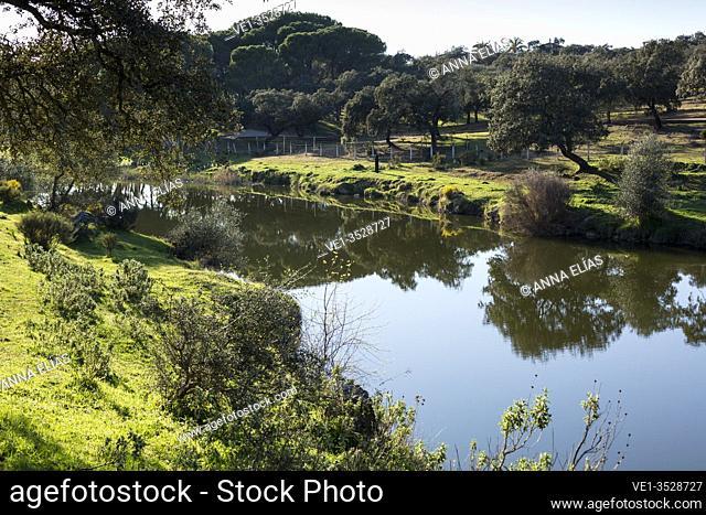 landscape, Guadiamar river, Seville, Castillo las Guardas, Andalusia, Spain, Europe
