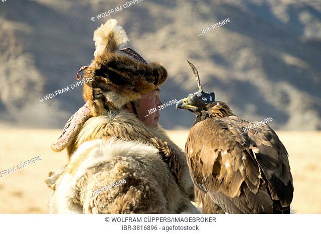 Kazakh eagle hunter wearing wolf fur holding an Festival in Sagsai, Bayan-Ölgii Aimag, Mongolia