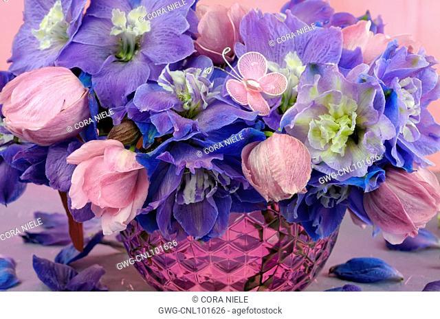 Blue Delphinium Flowers Stock Photos And Images Agefotostock