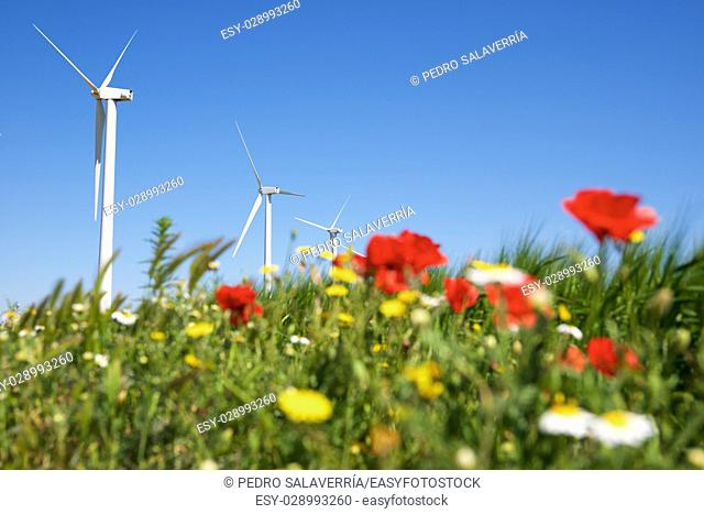 Windmill for electric power production, Zaragoza province, Aragon, Spain