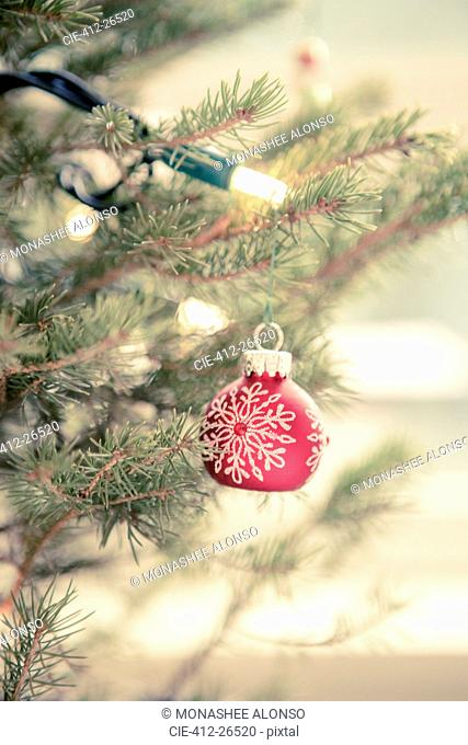 Red ornament and string lights on Christmas tree