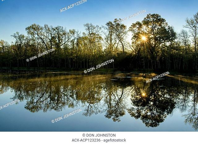 Dawn reflections on Lake Lafleur, Palmetto Isand State Park, Louisiana, USA