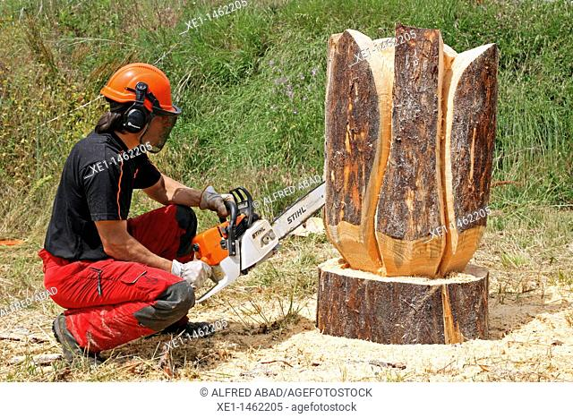 wood carving contest, Vilanova de Sau, Osona, Catalonia, Spain