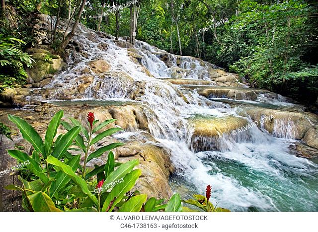 Dunns river falls Dunn's river falls, Ocho Rios, Jamaica, West Indies, Caribbean, Central America
