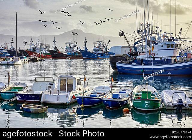Fishing port, Hondarribia, Gipuzkoa, Basque Country, Spain, Europe