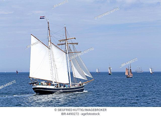 Sailboat Banjaard, Kieler Woche, Kiel fjords, Kiel, Schleswig-Holstein, Germany