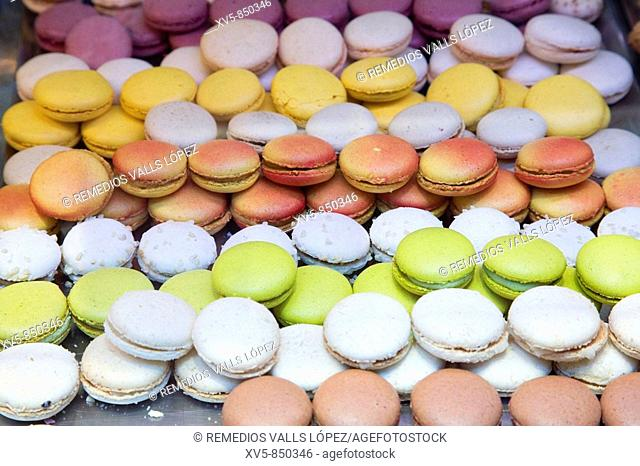 France, Midi Pyrenees, Haute-Garonne, Toulouse Gastronomy Sweets: macarons
