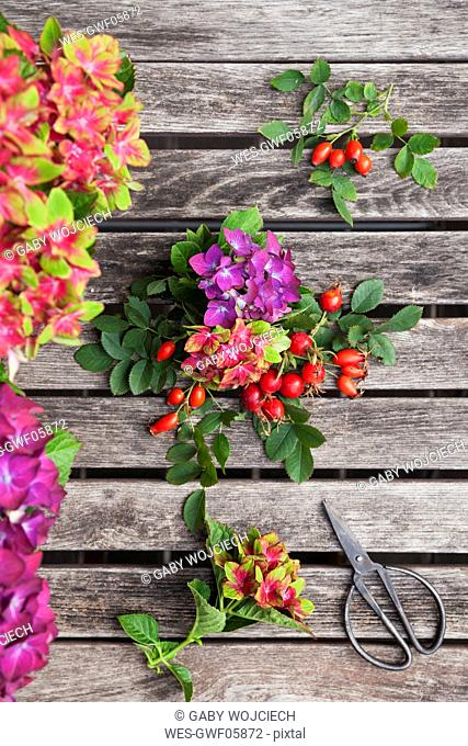 Hydrangeas, rosehips and scissors on garden table