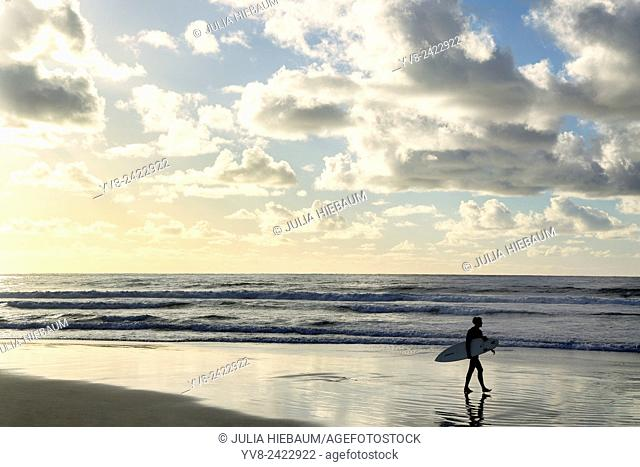 Male surfer walking at the beach at sunset, La Jolla, California