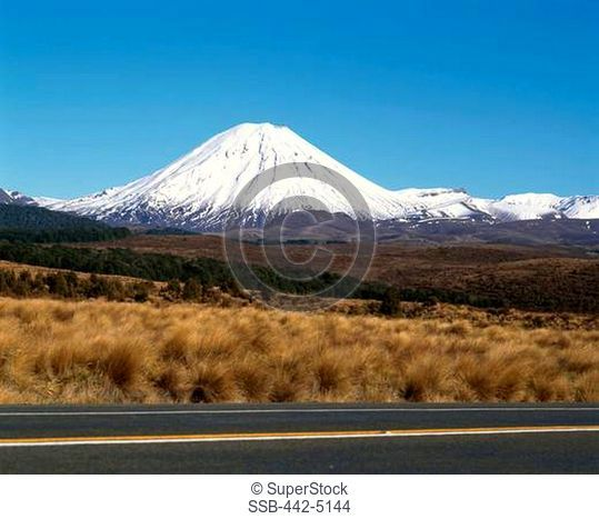 Road running through a landscape, Mount Ngarahoe, Tongariro National Park, New Zealand