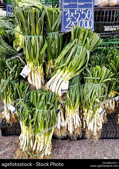 Mediterranean market in Alella village, Calçots, traditional vegetable, Barcelona, Catalonia, Spain, Europe