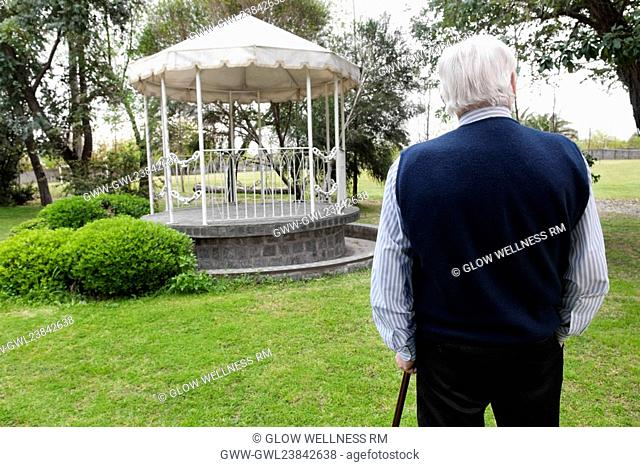 Rear view of a man standing with a cane in a garden