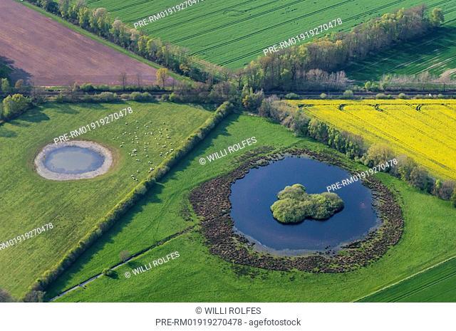 Field landscape with yellow blooming rape fields at Goldenstedt-Lutten from above, Vechta district, Niedersachsen, Germany / Feldlandschaft mit gelb blühenden...