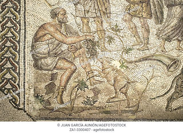 Bacchic Mosaic of The Gift of Wine at Ecija History Museum, Spain. Man with goat detail
