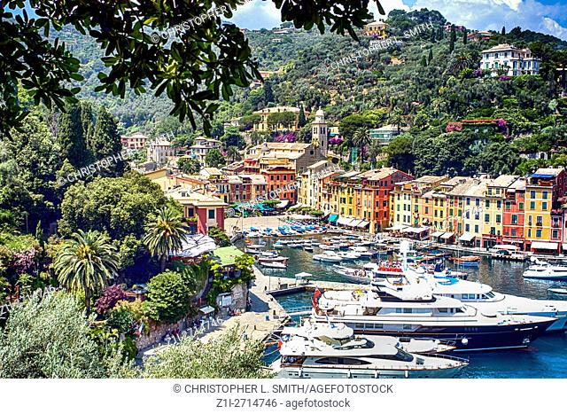 Looking down onto the harbour and waterfront with millionaires yachts settled for the summer in Portofino harbour, Italy