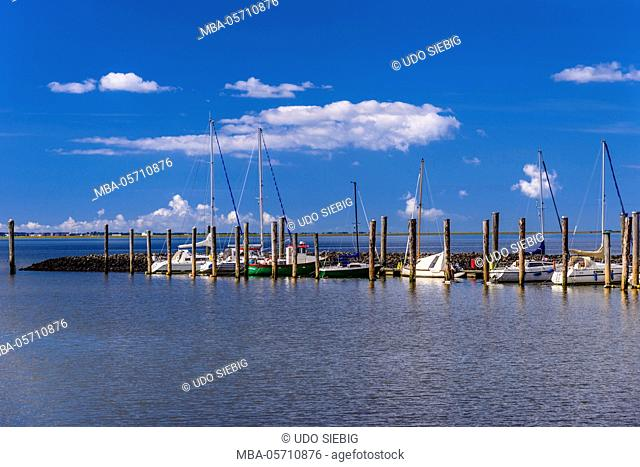 Germany, Schleswig-Holstein, North Frisia, North Frisian marsh, Schlüttsiel, Ockholm (municipality), mole with sailing yachts, in the background Halligen