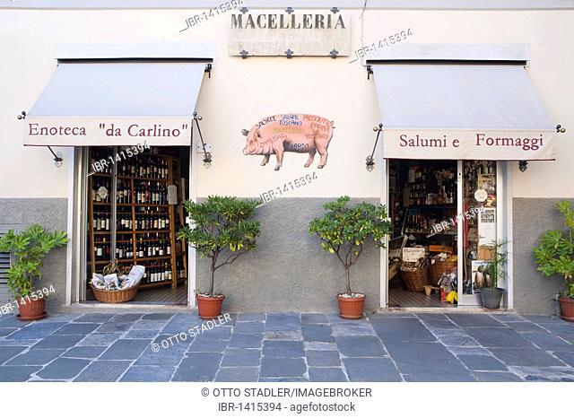 Enoteca 'da Carlino, delicatessen, Pietrasanta, Tuscany, Italy, Europe