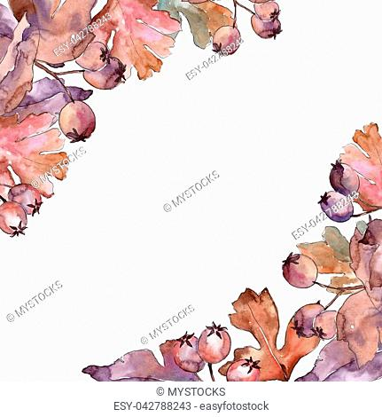 Leaves of hawthorn frame in a watercolor style. Aquarelle leaf for background, texture, wrapper pattern, frame or border