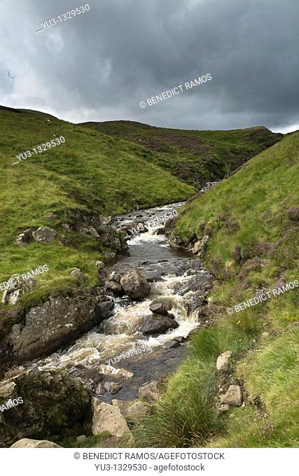 Stream running down hillside in the Southern Uplands near Moffat, Dumfries and Galloway, Scotland, England