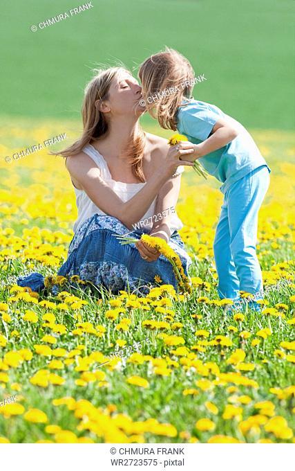 affection, affectionate, bonding, boy, Caucasian, child, childhood, dandelion, day, emotion, family, female, flower, happiness, happy, holding, joy, kid, kiss