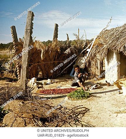Das einfache Leben der Bauern von Tunesien, Tunesien 1970er Jahre. The simple life of the Tunisian farmers, Tunisia 1970s