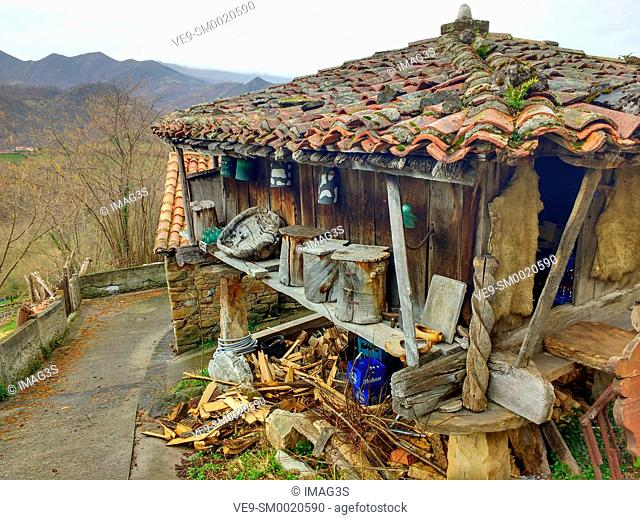 Horreo, wooden granary built on pillars typical in the north-west of Spain, El Tozu village, Asturias, Spain