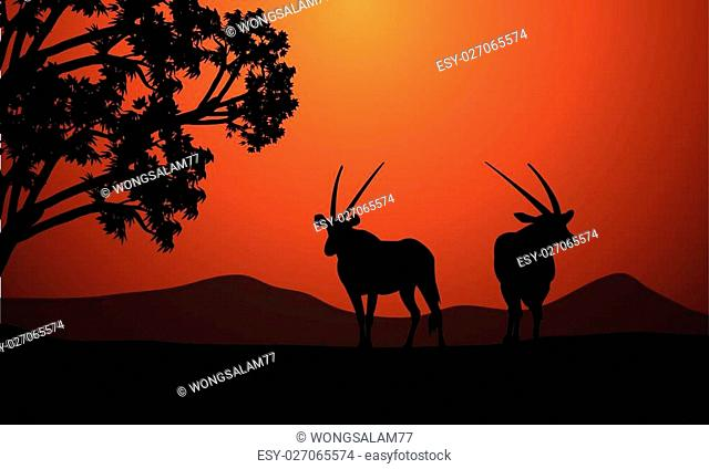 Silhouette of two antelope at the sunrise