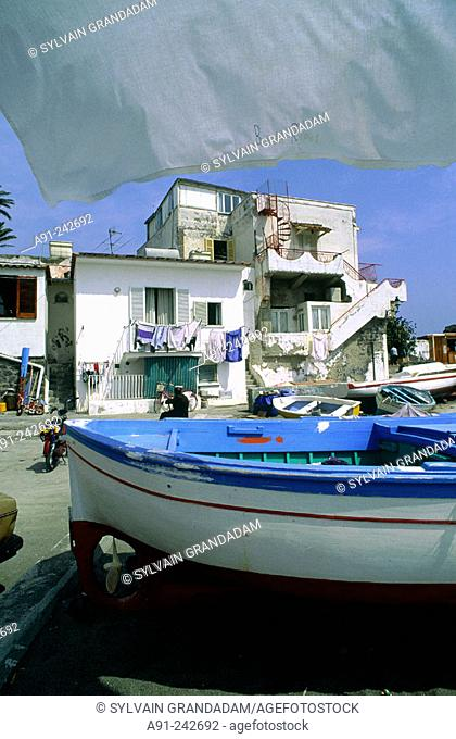 Fishing harbour. Ischia Island. Italy