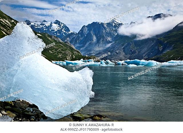 Scenic of icebergs from McBride Glacier in Muir Inlet, Glacier Bay National Park & Preserve, Southeast Alaska, Summer