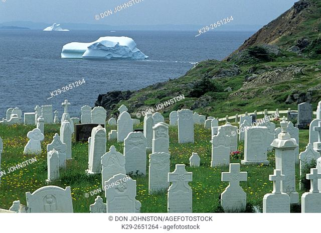 Grave markers overlooking Notre Dame Bay with icebergs, Twillingate, Newfoundland and Labrador, Canada