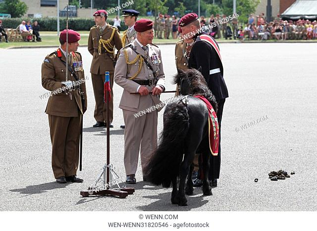 Prince Charles visits the Parachute Regiment at Merville Barracks in Colchester to mark the 40th Anniversary of His Royal Highness's Appointment as...