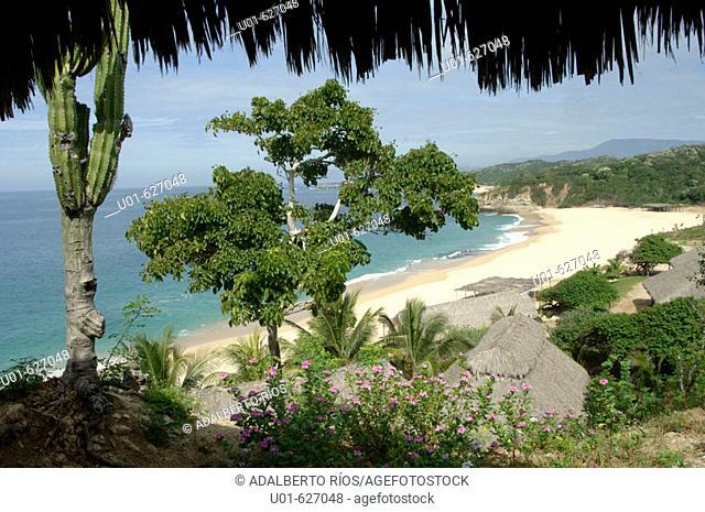 Playa de la Manzanillera. La costa Michoacana tiene una extension de 250 kms que recorre la carretera costera desde los limites con Guerrero hasta Colima