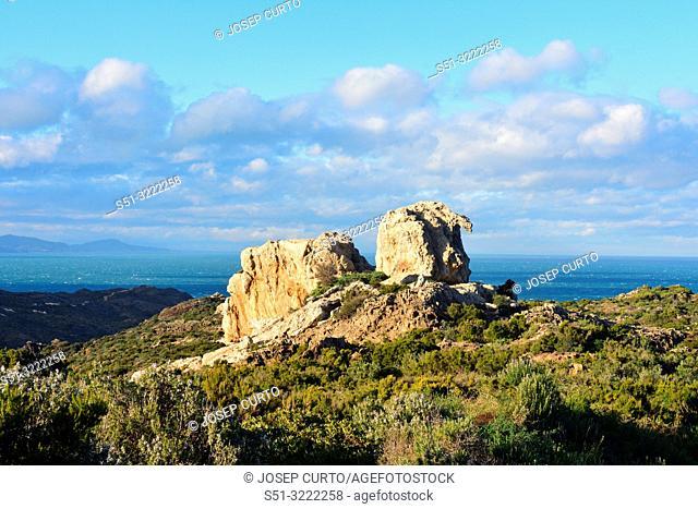 Camel shaped stone, Paratge de Tudela, Cap de Creus Natural Park, Alt Emporda, Costa Brava, Girona province, Catalonia, Spain