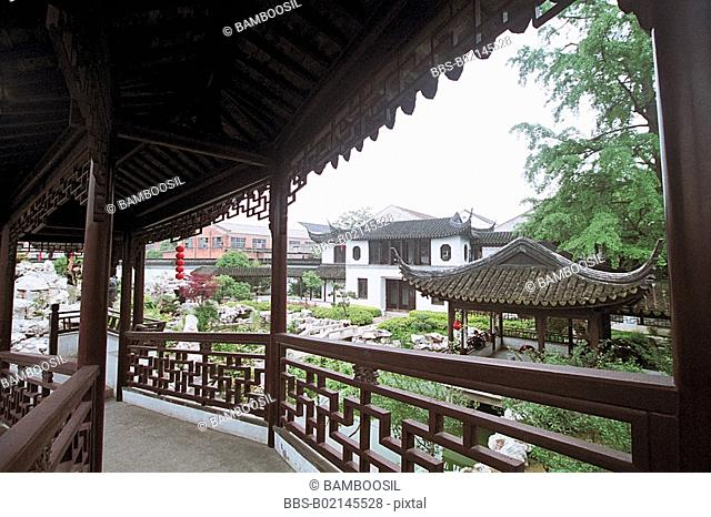 The old pine trees garden in old Mudu Town, Suzhou City, Jiangsu Province of People's Republic of China