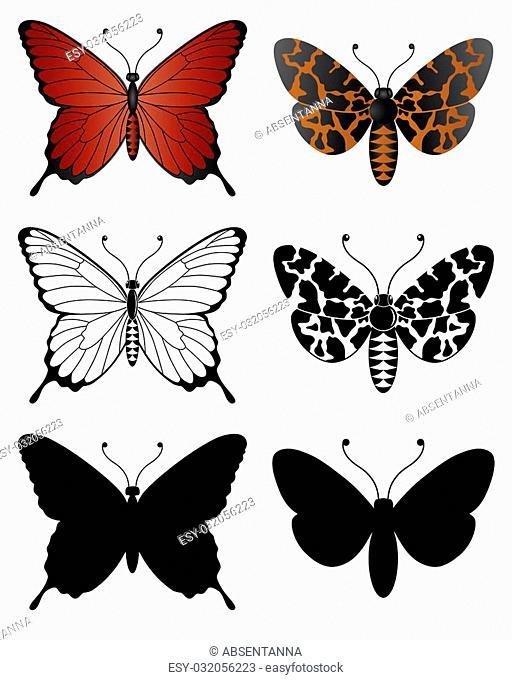 Isolated illustration of Butterflies