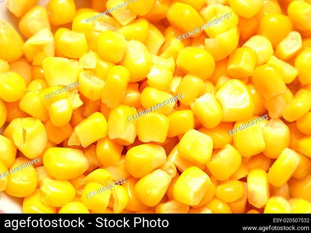 Sweet corn kernels arranged as background