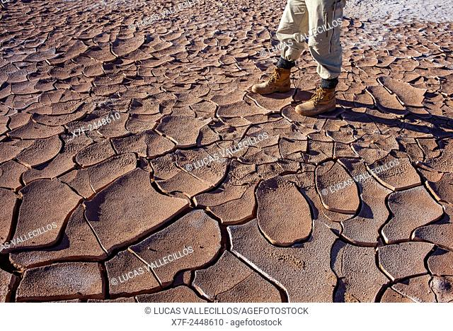 Detail, dry cracked ground, Valle de la Luna (Valley of the Moon ) near San Pedro de Atacama, Atacama desert. Region de Antofagasta. Chile