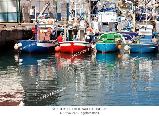 fishing boats at the harbour, Los Cristianos, Tenerife, Canary Islands, Spain, Europe