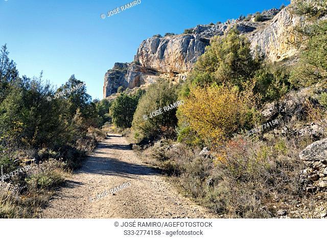 Road to Casuar's gorge. Segovia. Castilla Leon. Spain. Europe