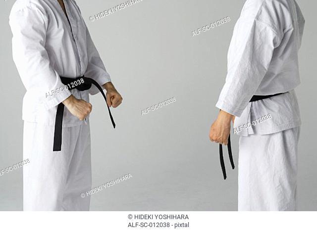 Two Blackbelts Sparring