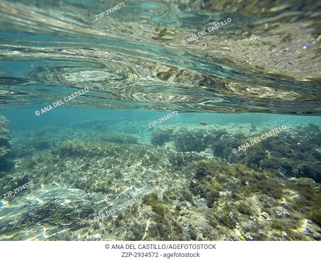Underwater shoot in Cabo de Palos Murcia. Spain
